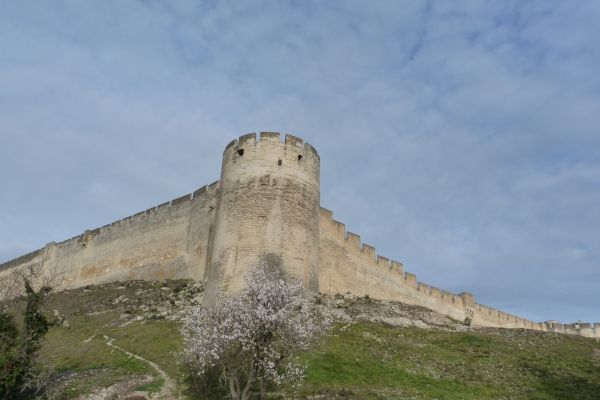 villeneuve-lez-avignon-les-remparts502463F2-597D-7C99-F2BF-89CA3314E913.jpg